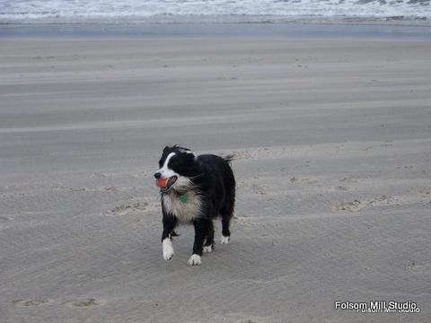 JT on the beach