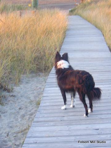 JT on Boardwalk that leads to her favorite spot