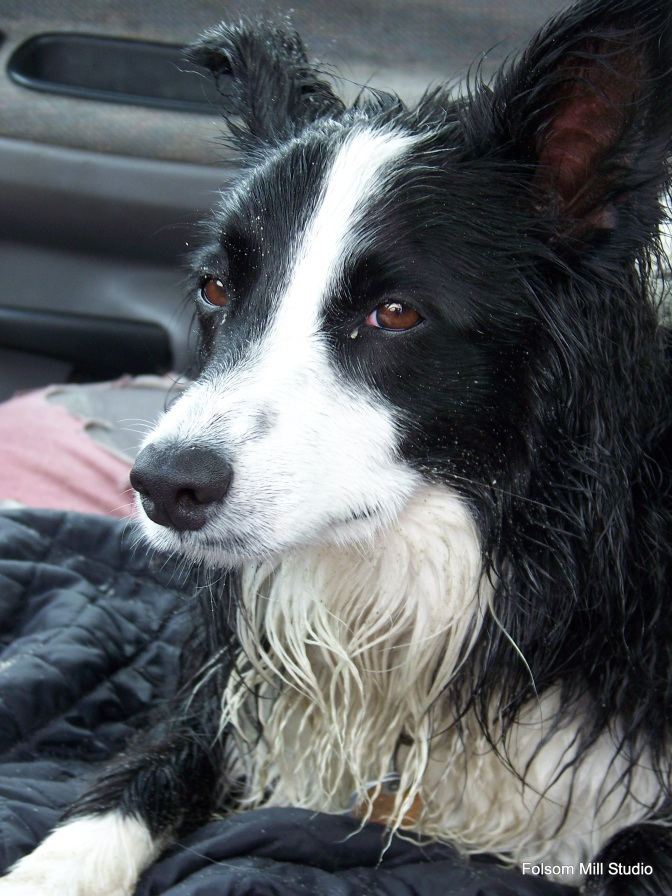 Wet and Tired