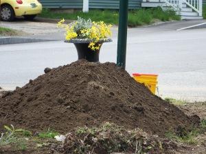 Nice soil