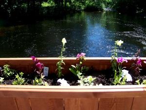 Flower Boex for the downtown granite bridge