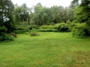 lower yard