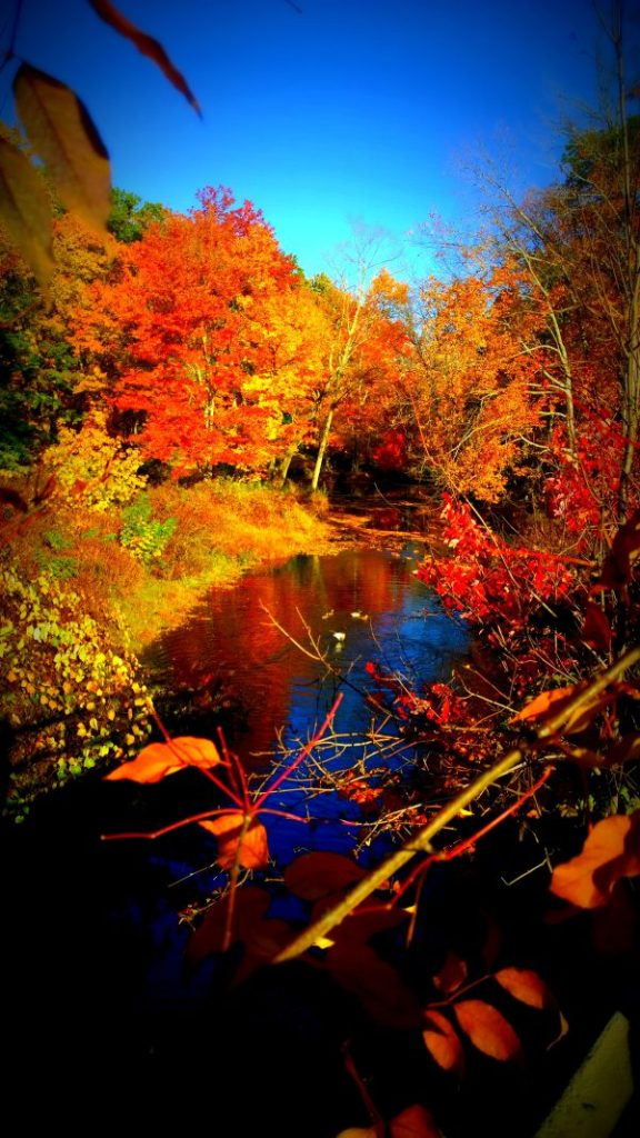 lamprey river epping nh by e.miller