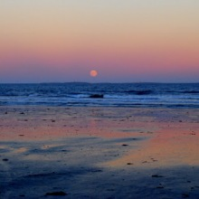 Up here in NH we love our seacoast because we have just 18 miles of it and this photo was taken along the beach in Rye NH