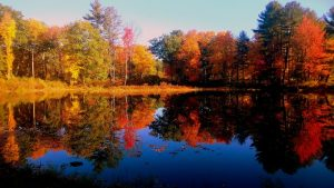 NH Fall Foliage with reflections